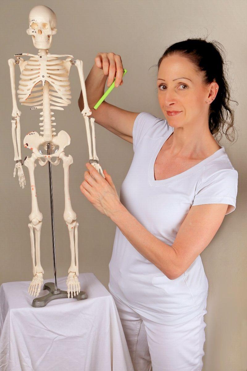 Auf dem Foto zeigt die Liebscher & Bracht Schmerztherapeutin Andrea Schirmer auf ein Modellskelett neben Ihr. Sie trägt weiße Kleidung und ihre braunen Haare zu einem Zopf.