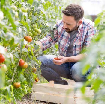 Back pain - gardening