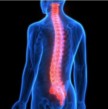 human with back pain