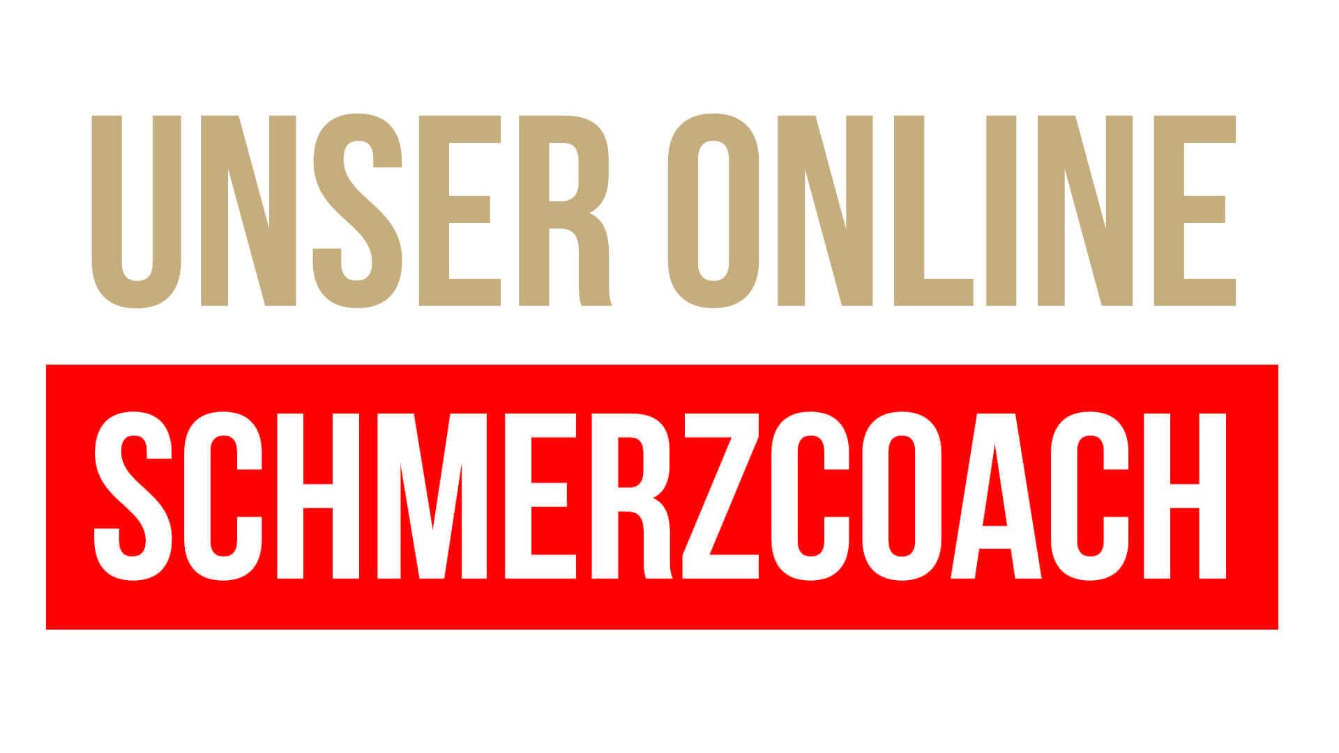 Online Schmerzcoach