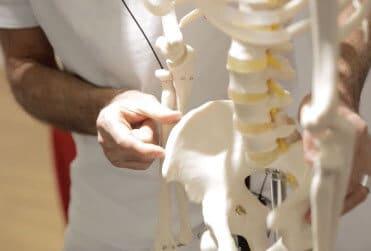 Ein Mann erklärt am Skelett was am Hüftknochen, in dem er mit dem Daumen und Zeigefinger eine ca. 2 cm breite Stelle am Hüftknochen zeigt.
