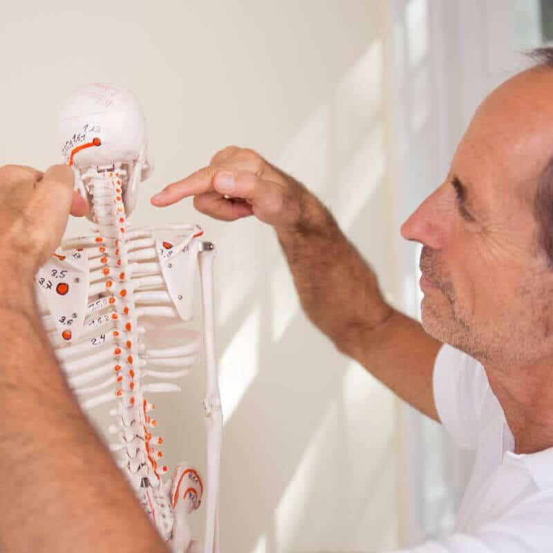Schmerzspezialist Roland Liebcher-Bracht zeigt am Skelett Osteopressurpunkte