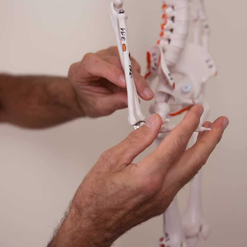 Schmerzspezialist Roland Liebscher-Bracht zeigt am Skelett mögliche Osteopressurpunkte zur Behandlug bei Rheuma