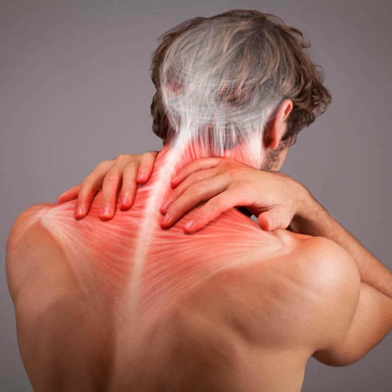 Mann hält sich den Nacken, in dem die Muskulatur eingezeichnet ist