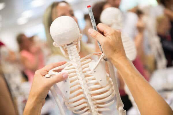 Im Vordergrund ist ein Skelett von hinten zu sehen. Zwei Hände halten dieses Skelett fest und im Hintergrund sind mehrere unscharfe Menschen zu sehen, die auch an Skeletten stehen.