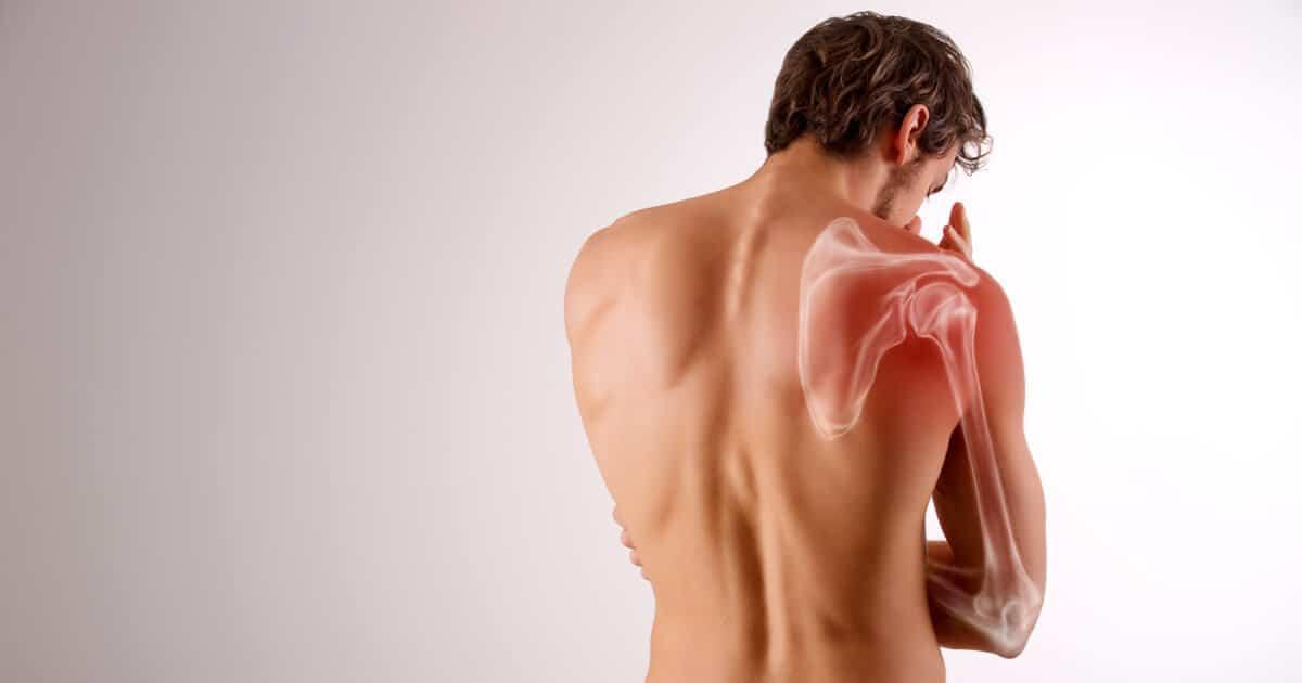 Der Rücken eines Mannes ist zu sehen. Darauf sind die Knochen der Schulter und Arme eingezeichnet.