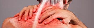 Bild eines Nacken eines Mannes, den er sich mit beiden Händen hält. Die Faszien im Nacken sind zu sehen