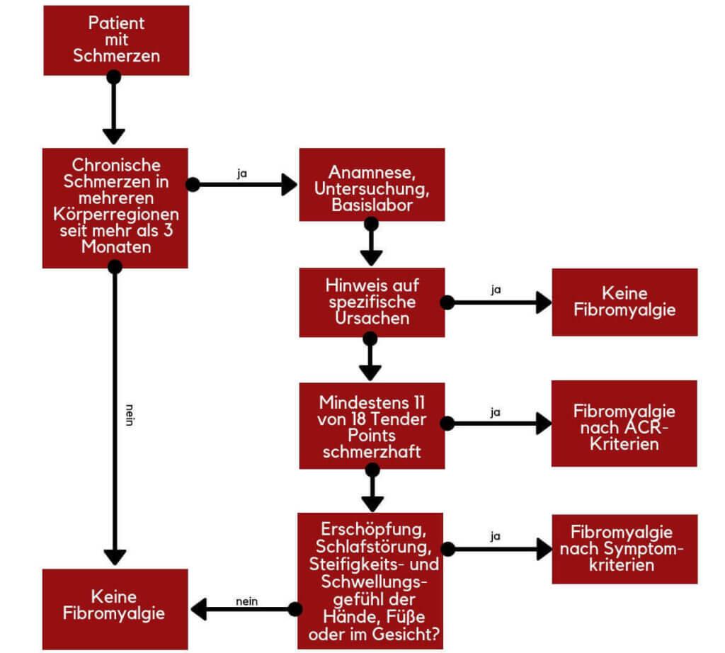 Schema zur Diagnose einer Fibromyalgie