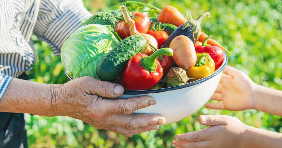 Ein Großvater übergibt seinem Enkel eine Schale voll frisch geerntetem Gemüse aus dem Garten. Zu sehen sind nur die Hände und das Gemüse