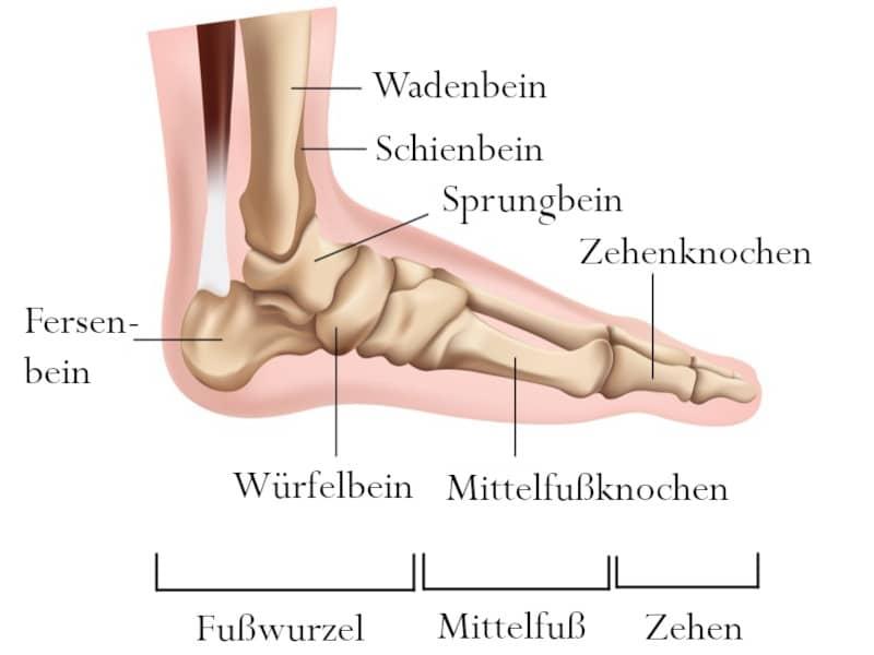 Am fußrist schmerzen Schmerzen Fußspann